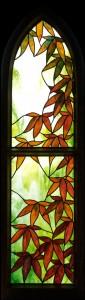 Framed Japanese Maple