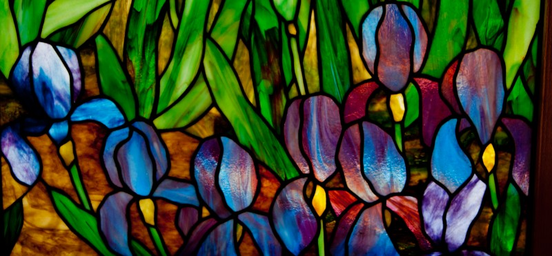 Irises at Slade